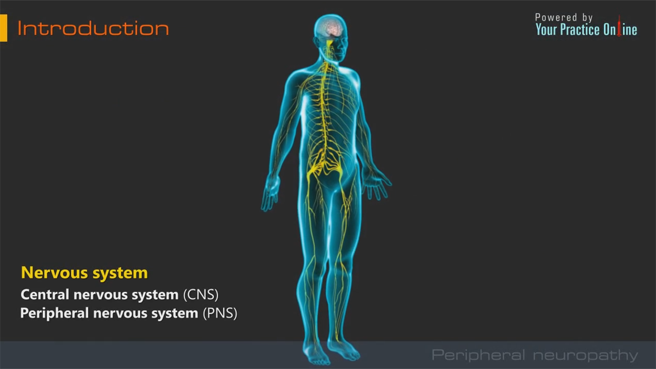 Peripheral Neuropathy Pain Management Orthopaedics Videos Your